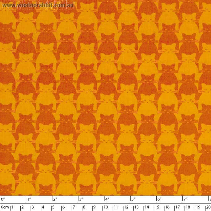 Kitty Kitty Tonal Cat Orange by Blank Quilting