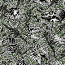 Jurassic Dinosaur Fossils Grey by In the Beginning Fabric