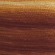 DMC Stranded Embroidery Floss 105 Variegated Tan/Brown