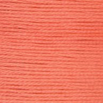 DMC Stranded Embroidery Floss 3341 Apricot