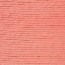 DMC Stranded Embroidery Floss 3824 LT Apricot