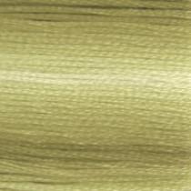 DMC Stranded Embroidery Floss 94 Variegated Khaki Green