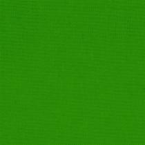 Devonstone Collection Solid Crocodile Green