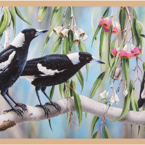 "Wildlife Art 3 Magpie 24"" (60cm) Fabric Panel by Devonstone"