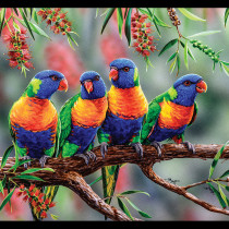 "Natalie Jane Parker Wildlife Art 4 - Lorikeets 24"" Panel by Devonstone Collection"
