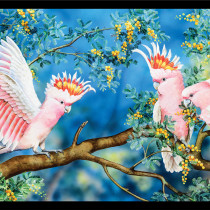 "Natalie Jane Parker Wildlife Art 4 - Major Mitchell's Cockatoos 24"" Panel by Devonstone Collection"