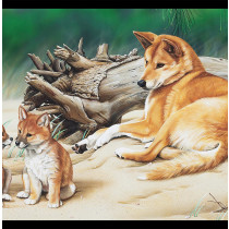 "Natalie Jane Parker Wildlife Art 4 - Dingo and Pups 24"" Panel by Devonstone Collection"