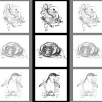 "Natalie Jane Parker Collection 40cm (15-3/4"") Tri Fabric Panel Frog, Platypus and Penguin Sketches by Devonstone"