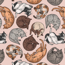 Cat Tales Cat Nap Natural By Free Spirit Fabric