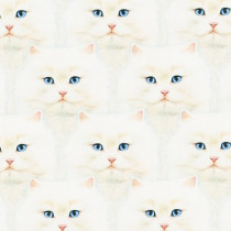 Whiskers & Tails Cats White by Robert Kaufman