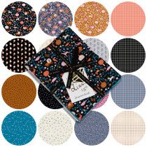 Ruby Star Society Liana & Grid FQ Pack 16pc by Moda Fabrics