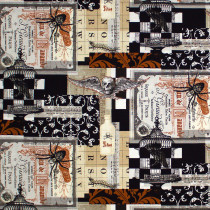 Spiders on Spooky Documents Black by Timeless Treasures