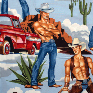 Wranglers (Shirtless Cowboys) Bright Multi by Alexander Henry Fabric