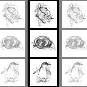 """Natalie Jane Parker Collection 40cm (15-3/4"""") Tri Fabric Panel Frog, Platypus and Penguin Sketches by Devonstone"""