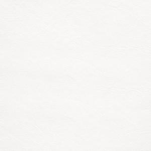 Marine Vinyl Smooth White Cap