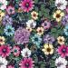 "Large Floral Dark Blue 145cm (57"" wide) Cotton Lawn Fabric by Devonstone"